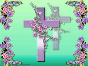 PurpleCross-LMG1.jpg (108951 byte)